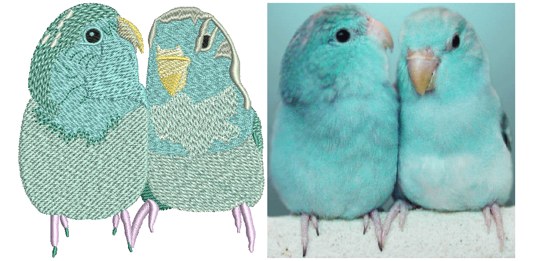bird-embroidery-logo.png